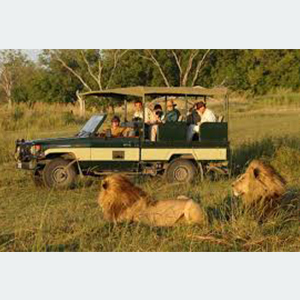 C. Safari in Africa; you\'d even go alone if no one else wants to join