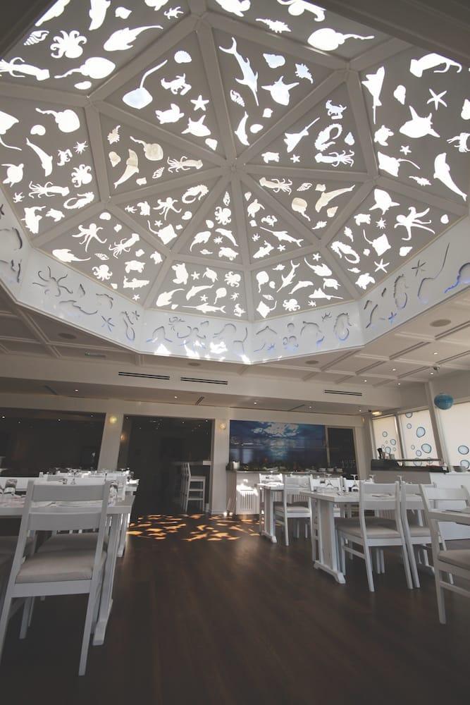 dome design cutouts fish shell seacreatures interior reflections