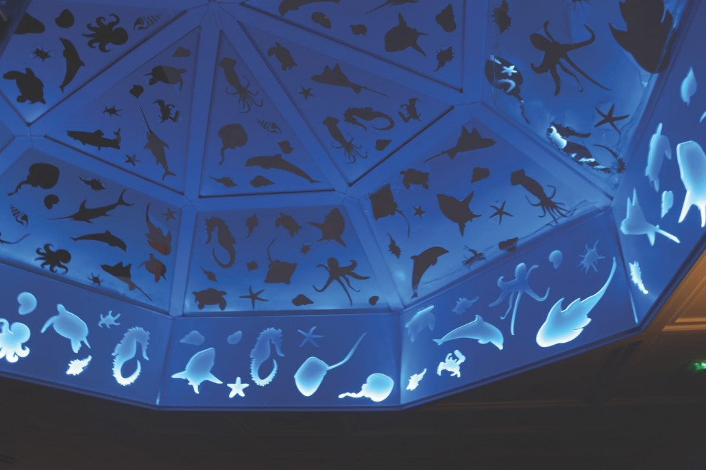 dome design cutouts fish shell seacreatures nighttime